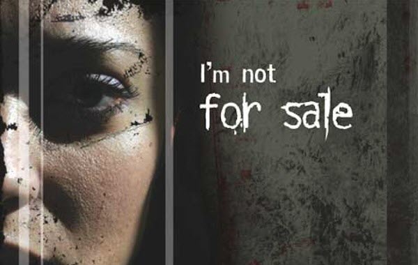 image wyndows project I am not for sale